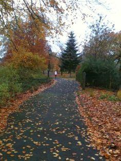 Abbott Hall Park, Kendal