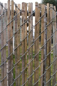 new old fence Weaving strips from an old bamboo fence thru a chain link fence instead of using plastic strips.Weaving strips from an old bamboo fence thru a chain link fence instead of using plastic strips. Front Yard Fence, Diy Fence, Backyard Fences, Fence Gate, Fence Panels, Garden Fencing, Fence Ideas, Pallet Fence, Chain Fence