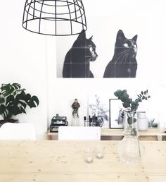 What's your favourite pet? Turn them into cool wall decoration with IXXI - a personal memory for any home!
