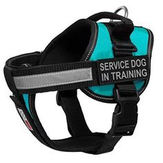 Dogline Unimax MultiPurpose Vest Harness for Dogs and 2 Removable SERVICE DOG IN TRAINING Patches with reflective lettering Teal Medium 22  30 ** Be sure to check out this awesome product. (This is an affiliate link)
