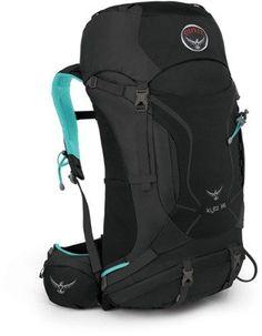GREY ORCHID - Osprey Kyte 36 Pack - Women's