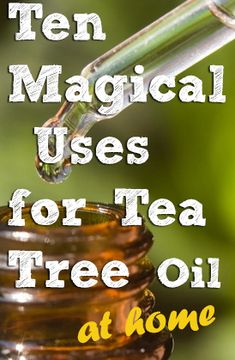 tea tree oil for home