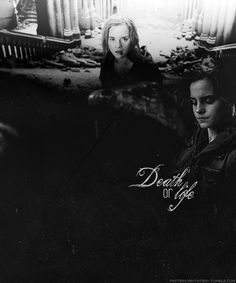 hermione+granger+death+or+life.jpg (500×600)