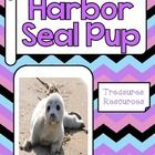 This packet includes resources to use with the Treasures reading program for Harbor Seal Pup. I have included everything you need for a focus wall ...