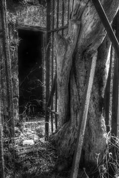 Behind the Walls by JP Terlizzi Photography, via Behance