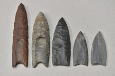 Archaeologist explains innovation of 'fluting' ancient stone weaponry. A collection of Clovis point replicas and casts in the archaeology lab at Kent State University [Credit: Kent State University]