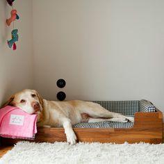 Orthopaedic Dog Bed, £359,  by Schlabbar - HundeLeben, now featured on eu.Fab.com !!