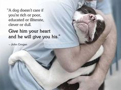 John Grogan quote about a dog's love I Love Dogs, Puppy Love, Cute Dogs, Dog Quotes, Animal Quotes, John Grogan, Pitbulls, Pit Bull Love, Schnauzers