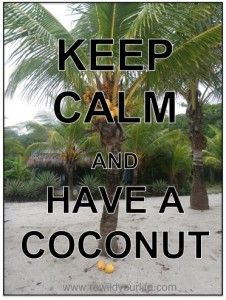 Because coconuts cure all (: