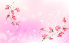 Pin by Lisa Wirth on law Pink flowers background Flower background wallpaper Pink flowers wallpaper