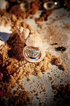 wedding rings in sand and shells for ocean themed wedding