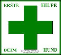 ERSTE HILFE BEIM HUND - Themenübersicht
