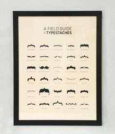 Old Tom Foolery's Field Guide to Typestaches