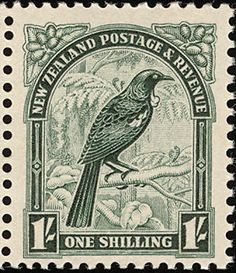 Stamp New Zealand Parson Bird used 1 Deep Green Old Stamps, Rare Stamps, Vintage Stamps, Kiwiana, Vintage Typography, Mail Art, Stamp Collecting, Art Boards, New Zealand