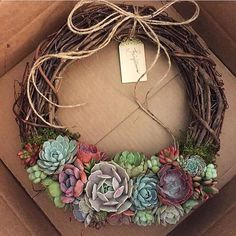 """🍁🍃🍂🌺🍃 14"""" wreaths back in stock. (Link in bio) #frontgate #fairyblooms #succulentwreath"""