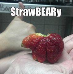 StrawBEARy. OMG!