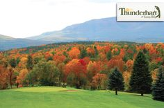 $18 for 18 Holes with Cart and Range Balls at Thunderhart #Golf Course in Freehold near Albany ($54 Value. Good Any Time until June 1, 2016!)  Click here for more info: https://www.groupgolfer.com/redirect.php?link=1sqvpK3PxYtkZGdlbn2s