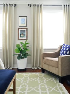 Good Fiddle-Leaf Fig care makes your plant stronger and more resistant to disease. Here are 10 critical but simple components to caring for your plant. Young House Love, Ikea, Fiddle Leaf Fig, Living Spaces, Living Room, Love Design, Design Ideas, Inspired Homes, Beautiful Space