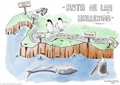 Ruta de las ballenas en el viaje a sudáfrica My Drawings, About Me Blog, Comics, Cape Town, Seaside, Whales, Paths, Sharks, Comic Book