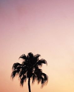 Ombré skies to salute the end of the weekend.