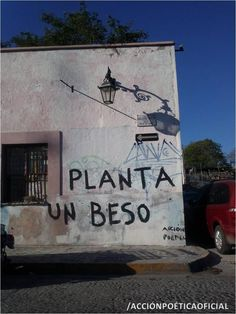 Planta un beso  #poesia #accionpoetica