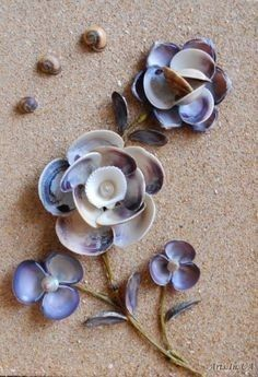 Seashell crafts // make art // flowers // beach // sea // shells // ocean /: waterIron peg and glue the shells on it Source by arts.She'll flowers for box frames!Picture of shells – Dina Yakovenko - Crafts Sea Crafts, Nature Crafts, Crafts To Make, Shell Crafts Kids, Craft Kids, Bible Crafts, Seashell Art, Seashell Crafts, Seashell Projects