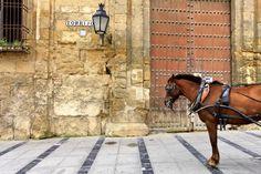 Andaluzia España