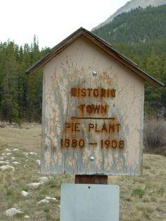 Pie Plant - Colorado Ghost Town