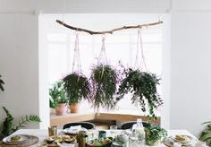 A Pair & A Spare | DIY Hanging Plant Centrepiece (& A Nespresso Giveaway!)