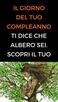 #giornocompleanno #albero #consapevolezza#animanaturale