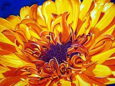 """""""Sunshine"""" #sunflower #sunshine"""
