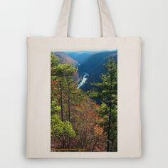 Pennsylvania Grand Canyon Tote Bag by ArtRave: Ave Hurley Illustrations - $18.00