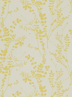 Buy Harlequin Salvia Wallpaper, Citrus, JohnLewis.com - John Lewis
