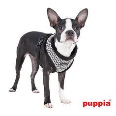 """closeup of Authentic PUPPIA """"Damier Geo Square"""" Choke-free,(over-the-head) Halter Harness in Black/Whte"""