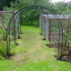 Special traditional rose tunnel or pergola Pergola Garden, Backyard, Garden Structures, Outdoor Structures, Iron Pergola, Arbors Trellis, Traditional Roses, Arbor Ideas, Yard Ideas