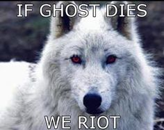 25 Reasons to Watch Game of Thrones Stop killing direwolves. Seriously! I dont care half so much when a person dies as I do when a direwolf dies! Leave Ghost and Nymeria out of it! And for crying out loud, reunite Arya and Nymeria and make it sweet, no grudges!