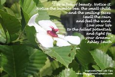 Life is full of beauty. Notice it. Notice the bumble bee, the small child, and the smiling faces. Smell the rain, and feel the wind. Live your life to the fullest potential, and fight for your dreams. --Ashley Smith
