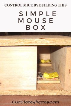 Learn how to build this mouse box and control your mice problem. This simple box is the perfect solution to help you with these pests. Fall Vegetables, Organic Vegetables, Mice Control, Pest Control, Organic Gardening, Gardening Tips, Grow Your Own Food, Grow Food, Homestead Gardens