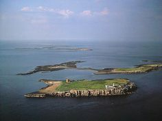 Farne Islands (England) Reviews - Destinations National | dooyoo.co.uk
