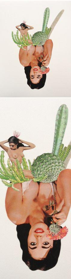 Danielle Krysa (The Jealous Curator) - Love me or Leaf me // Petites Mélodies