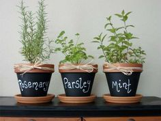 Clay Pots painted with chalkboard paint! So easy to do. My girls want to make an indoor garden. This is perfect. :) such a cute idea for your herbs pots!