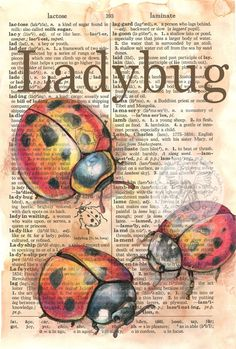 Ladybug Mixed Media Drawing on Distressed, Dictionary Page - flying shoes art studio