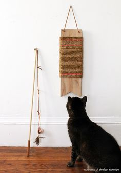 10203536627074713 also 281653 besides Cat Care 101 besides Furniture Cat Scratch Pads moreover Modern Cardboard Cat Scratcher House. on cardboard cat scratching pads
