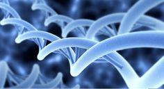 Il primo farmaco che potenzialmente può correggere il difetto di base che causa la malattia di Huntington è stato preso da pazienti in uno studio clinico.
