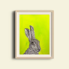 Long Ears is a premium quality giclee print on archival paper. A fine art print of an original painting / design made with ink and pencil. Framed Art Prints, Fine Art Prints, Irish Design, Paint Designs, Figurative Art, Prints For Sale, Printmaking, Buy Art, Giclee Print