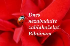 Bibiána je rozvážna - Zaujímavosti - SkolskyServis.TERAZ.sk