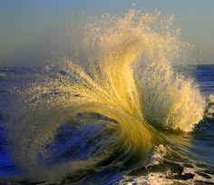 Photography by William Dalton (4)