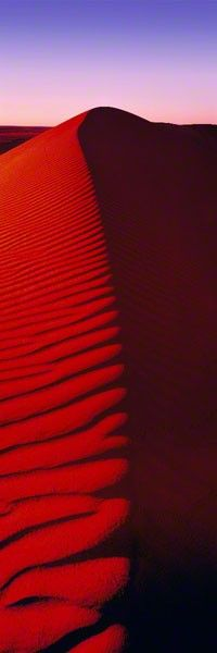 Red Dune Stairway :: Peter Lik