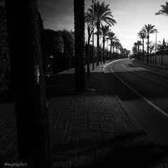 La carretera.
