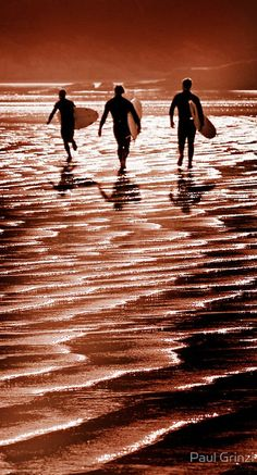 Surfing at Wilsons Prom in Tidal River, southern Australia • photo: Paul Grinzi on Flickr